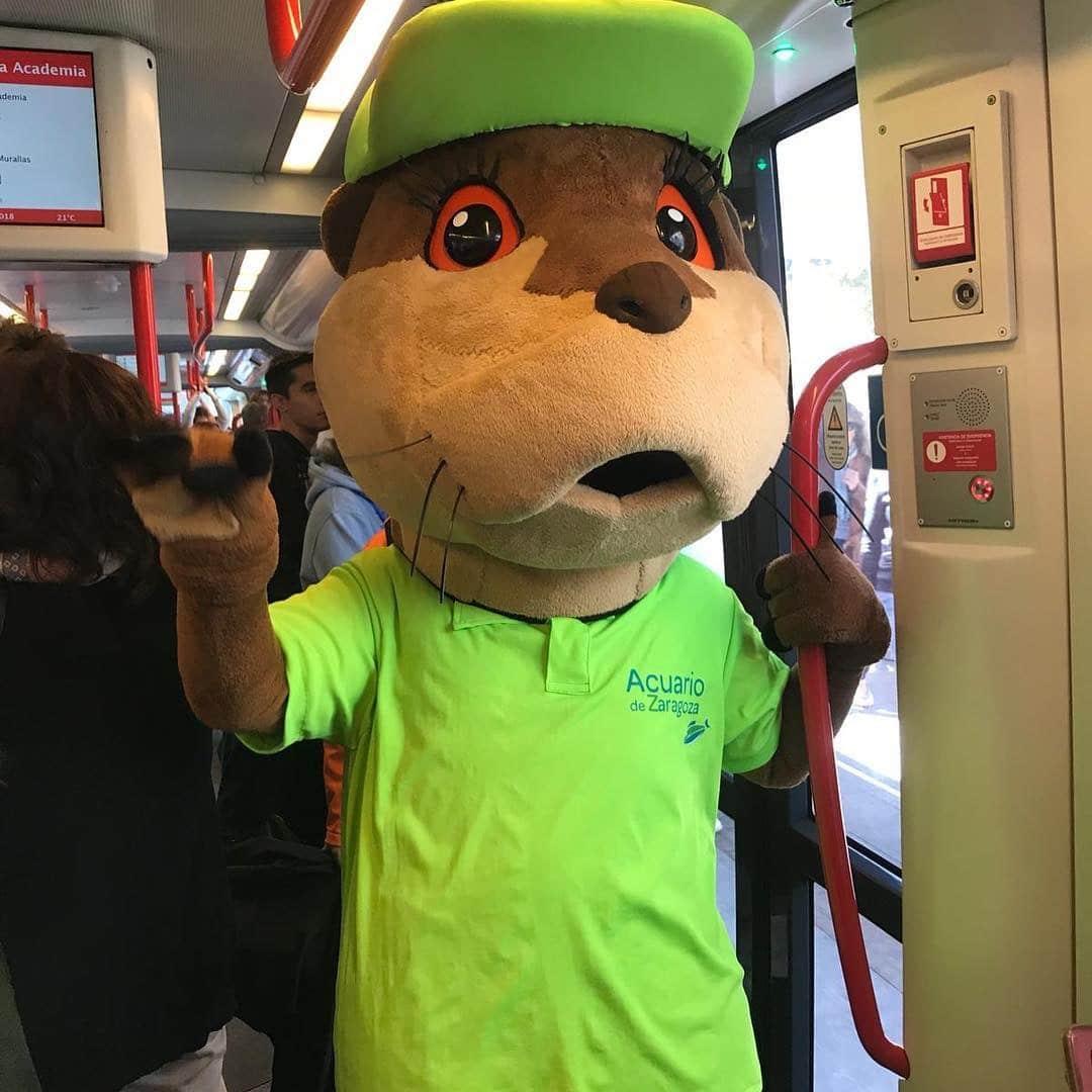 Mascota Publicitaria Acuario de Zaragoza Ebrita